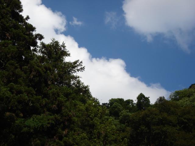 Fine sky