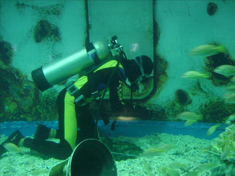the same scuba diver