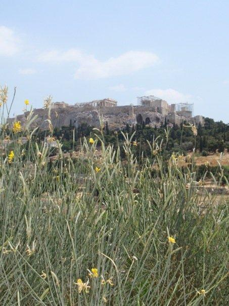 acropolis from temple of hephaestus