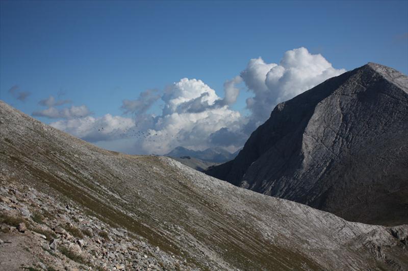 Снимка от подсичащата Кутело пътека. На фона на облаците се вижда ято волно реещи се във висините птици.