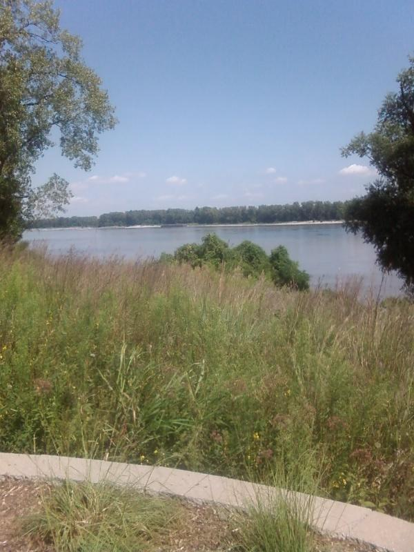 a view of the mighty Mississippi