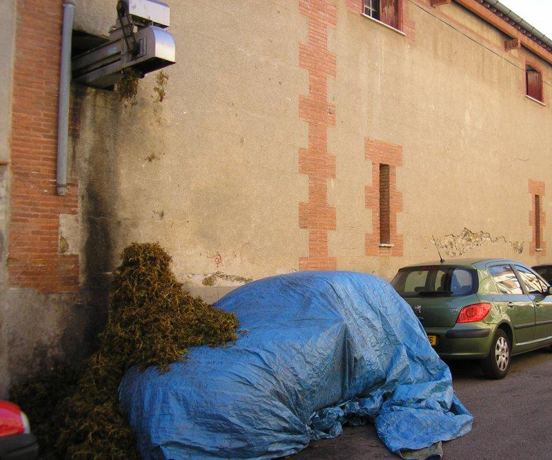 Don't park ouside the local cooperative at harvest time!