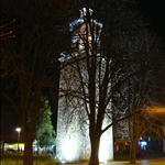 Clock Tower, Svishtov