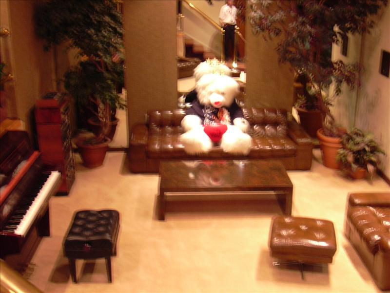 the giant teddy bear in Elvis's workout room