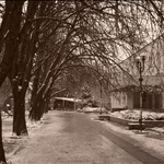 Svishtov in the Winter
