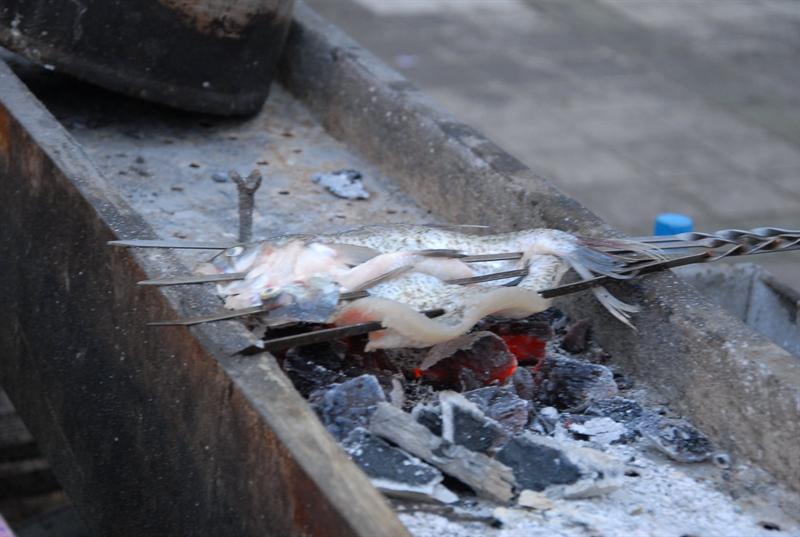 布尔津夜市,烤狗鱼