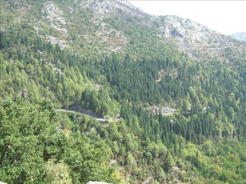 Dobrsko Selo