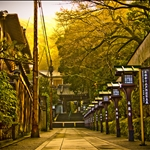 04 Feb '09 - Kyoto