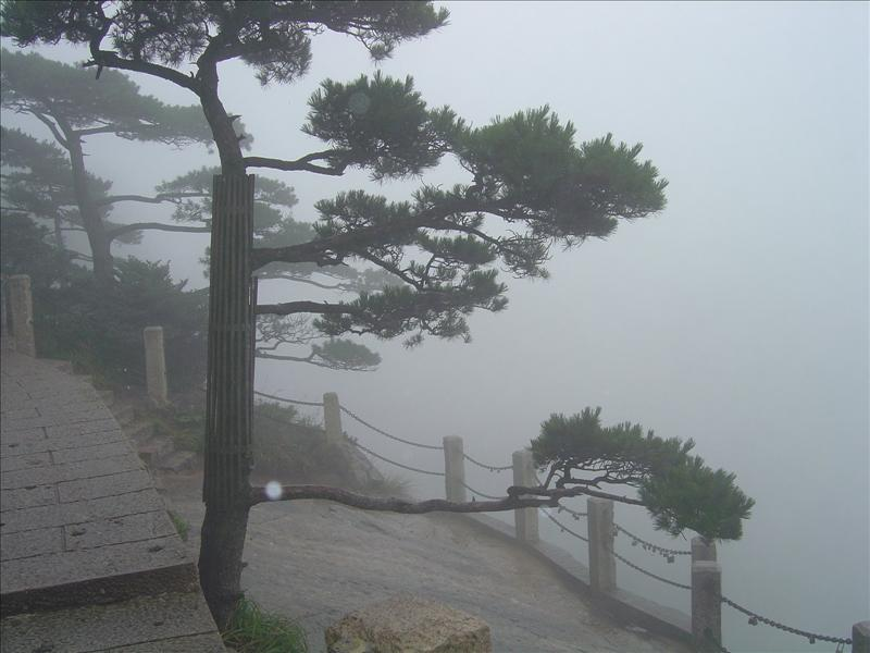 Huang Shan (Yellow Mountain)-noted for its sea of clouds,strange rocks and peculiar pines including 36 peaks