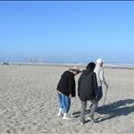 a morning stroll on the beach...