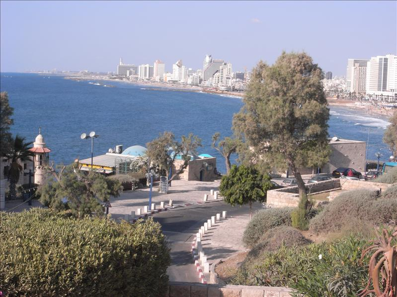 hapisgah gardens, jaffa.  tel aviv in the background