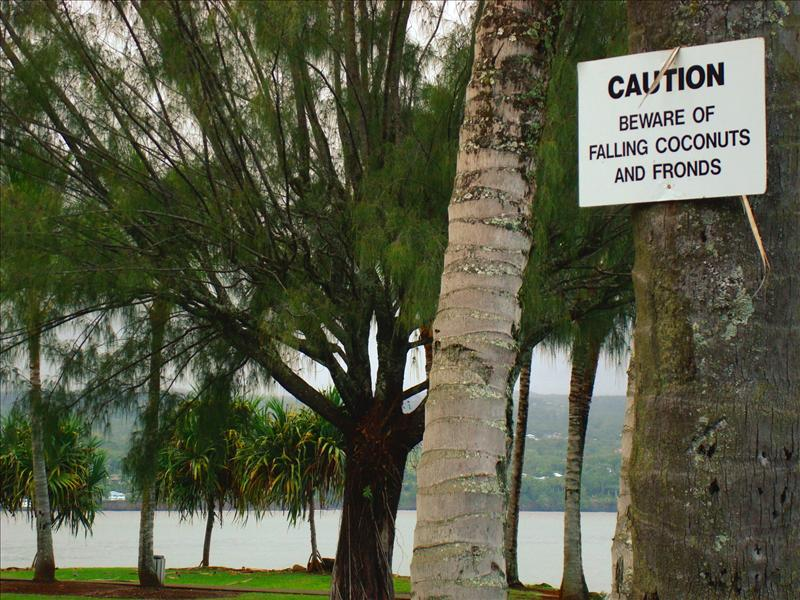 Hilo - Hawaii's dangers