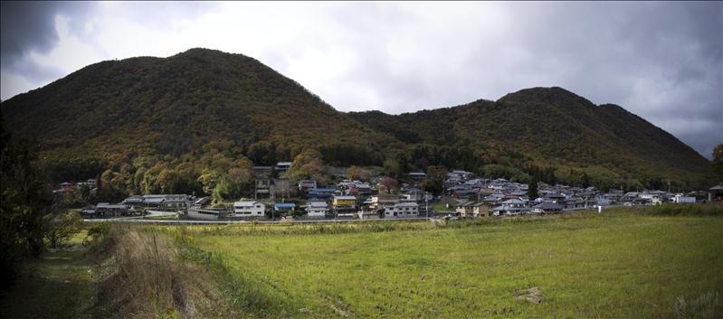Tamba