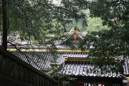 Rainy Nikko