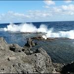 Tonga 2008