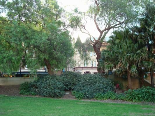 MY HOTEL FROM THE BOTANICAL GARDENS