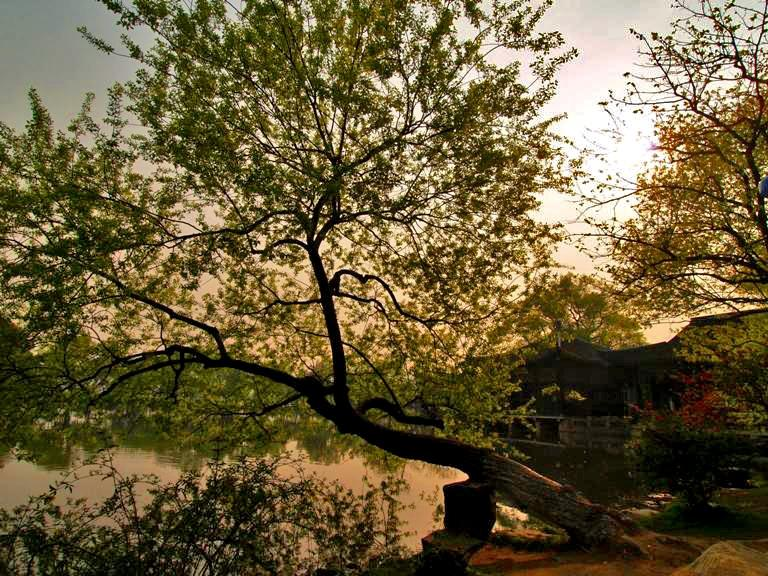 sunsetinhangzhou1.JPG