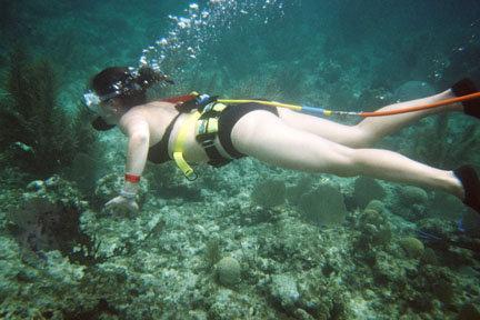 Snuba-Hybride entre la plongée et l'apnée