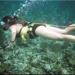Snuba-Hybride entre la plongée et l