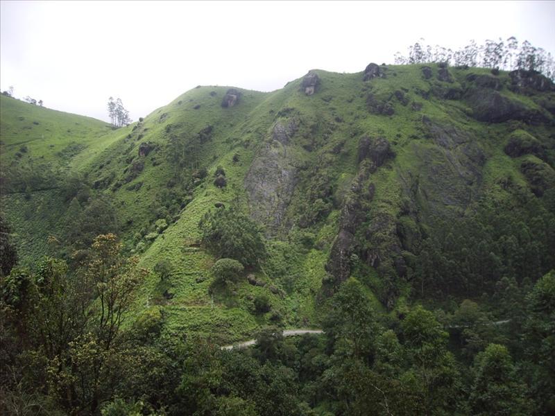 Munnar - South India