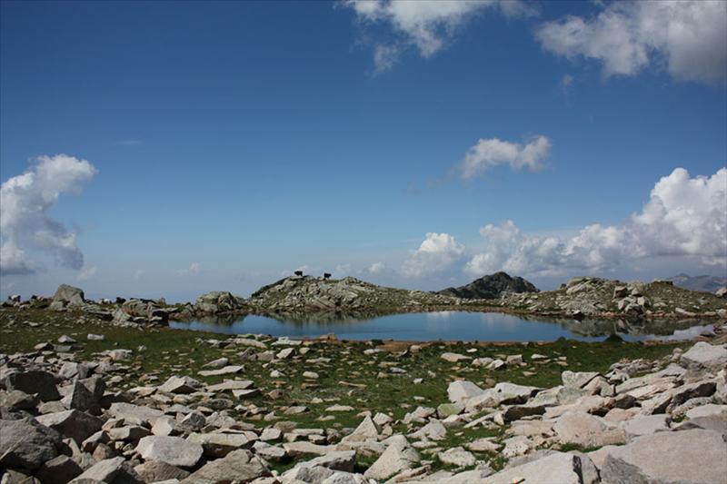 На слизане от върха, преди да се спуснем на пътеката от х. Беговица, минахме покрай това езерце. То е под седлото между Каменица и Безименния връх.