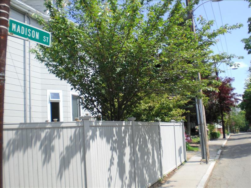 5 madison street