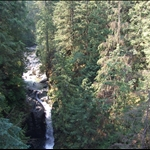 View from Lynn Valley Suspenison Bridge
