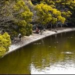 Lake in Akashi Park
