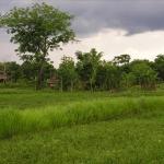 Laos - May 2004