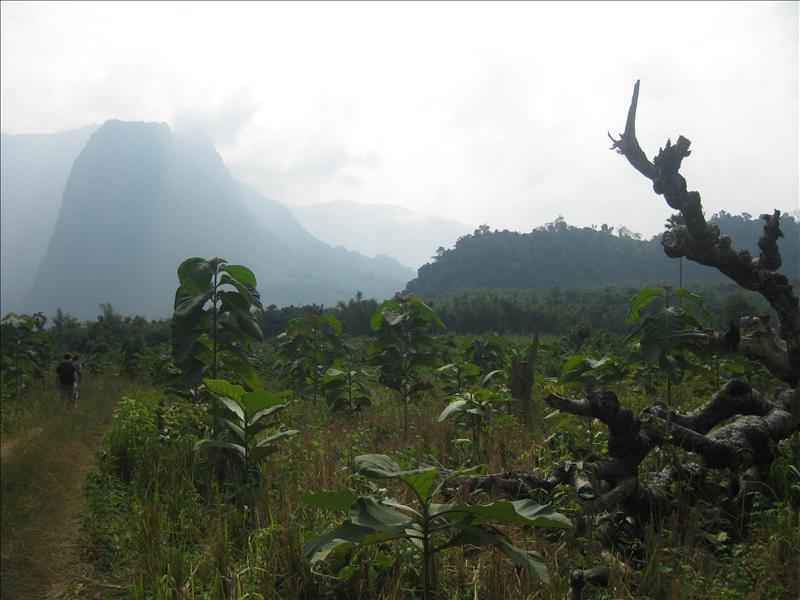 On our village trek through the mountains