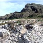Cape Falcone