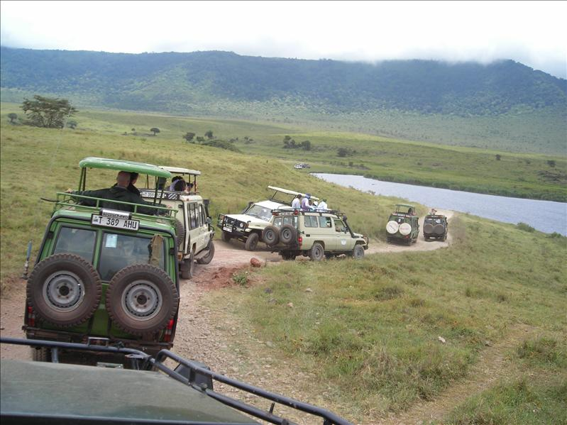 tourists•safari•Ngorongoro