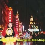 南京路夜景4.jpg