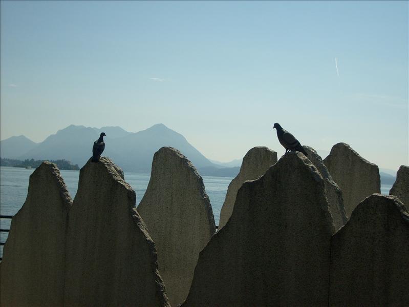 Stresa•lago maggiore•2009