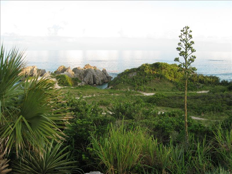 Jobson's Bay