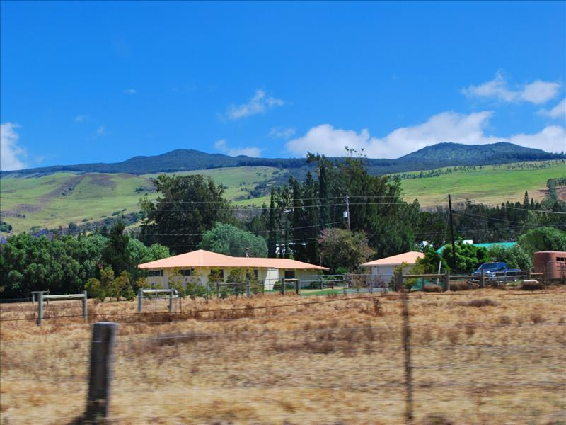 Waimea - Parker Ranch