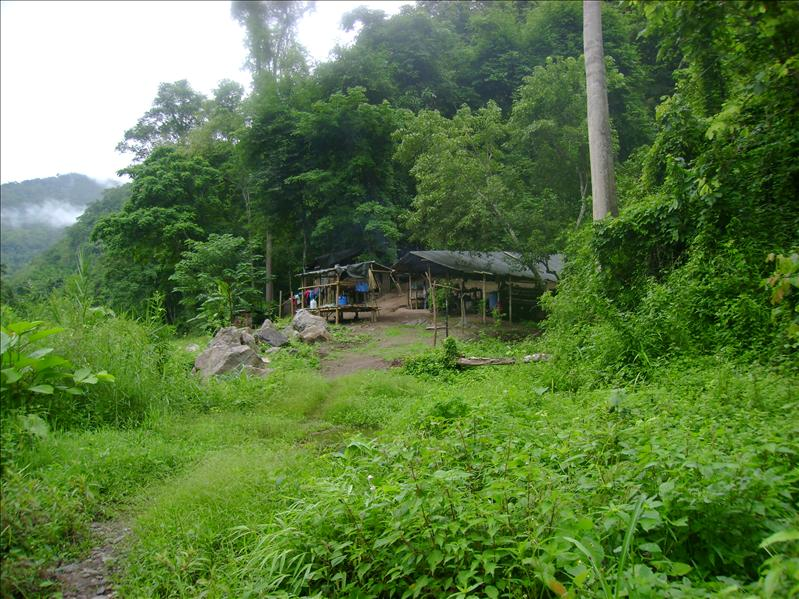 Jungle Camp, Between Pai and Mae Hong Son