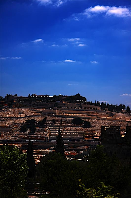 Har HaZeitim (Mount of Olives)