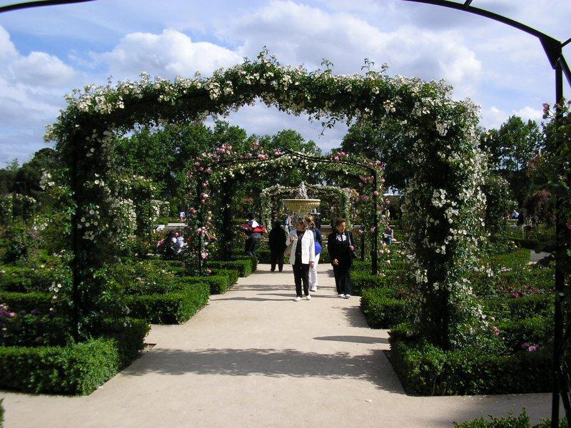 """The roses were out in the """"Parque del Buen Retiro""""..."""