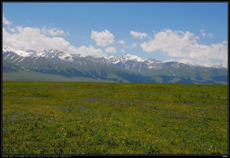 空中草原,雪山