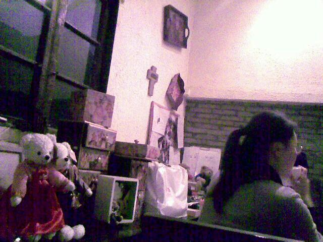 田子坊的泰迪之家  用手机拍摄 (爱拍网 http://ipai.cn/photologs/4227)