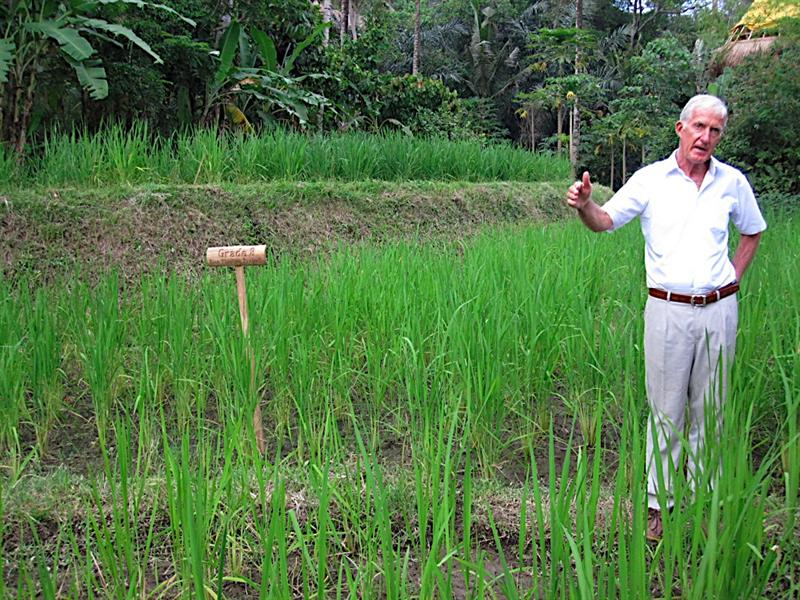 The Director, Ronald Stone, explaining how the students plant their own rice patties.
