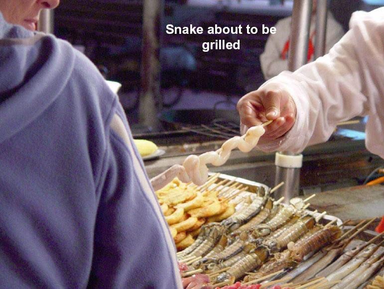 snake about to be grilled