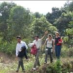 trekking from sapa, homestay in vietnam