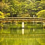 07 Feb '09 - Sorakuen Garden