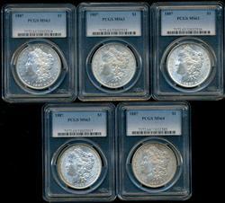 Wholesale Lot of 5 PCGS MS63 graded 1887-P Morgans
