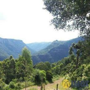 Sítios/Áreas de Terra em Gramado, bairro Linha Nova