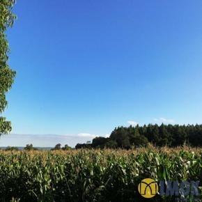 Sítios/Áreas de Terra em Gramado, bairro Várzea Grande
