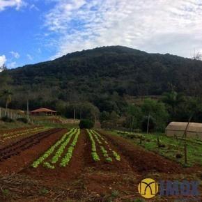 Sítios/Áreas de Terra em Gramado, bairro Ávila Baixa