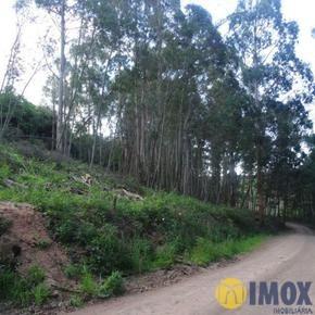 Sítios/Áreas de Terra em Gramado, bairro Linha Ávila